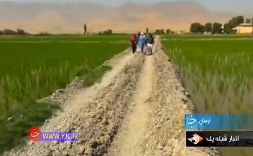 عشق و علاقه به کشاورزی بانوی تهرانی را روانه امیرآباد کرد