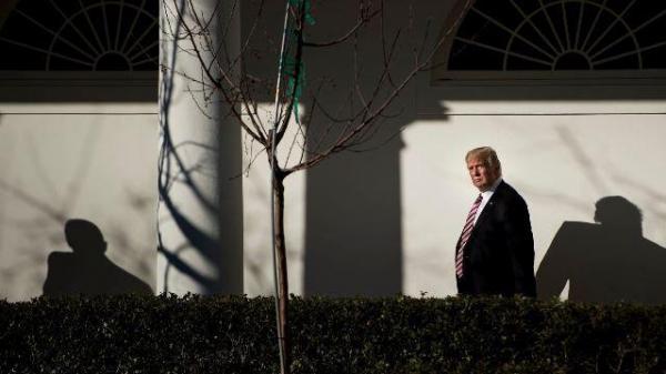 ترامپ نزدیکانش در کابینه را احمق خواند!